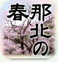 gray_nahoku.jpg